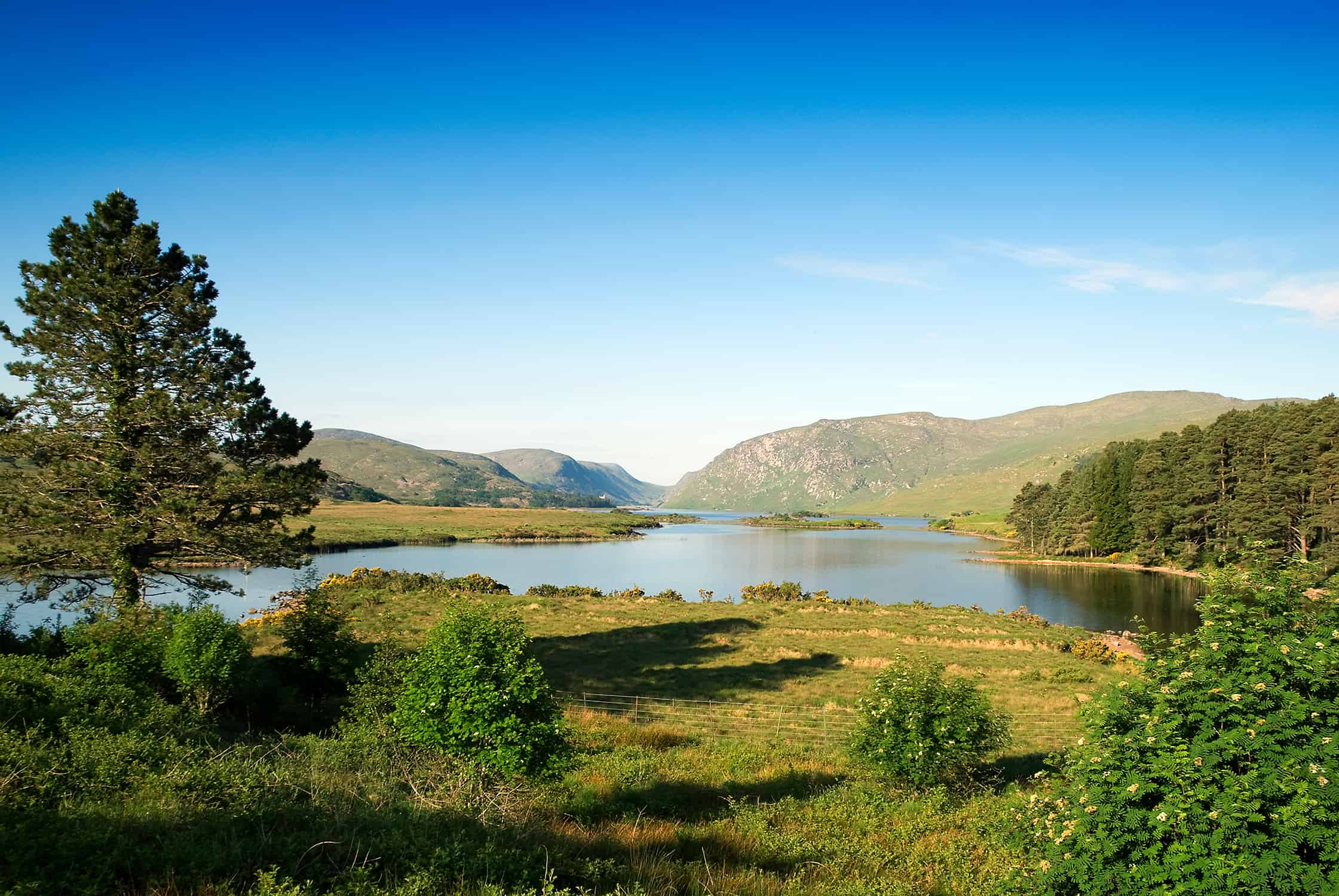 Glenveagh_National_Park_(2579034038)